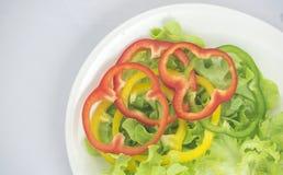 Зеленый салат дуба с multi болгарскими перцами цвета Стоковые Фотографии RF