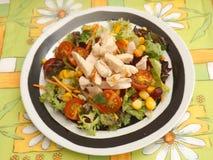 1 зеленый салат Стоковые Изображения RF