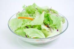 1 зеленый салат Стоковое фото RF