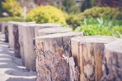 зеленый сад с деревянными штрафами Стоковая Фотография RF