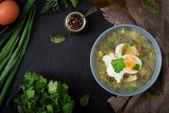 зеленый суп щавеля стоковые изображения rf