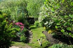 Зеленый след в красивом саде Стоковое Изображение RF
