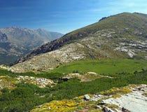 Зеленый луг горы с камнем и трясет стоковое фото