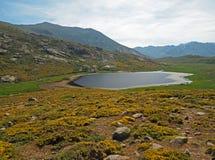 Зеленый луг горы с утесами озера стоковое изображение rf