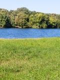 Зеленый луг на речном береге в летнем дне Стоковое Изображение RF
