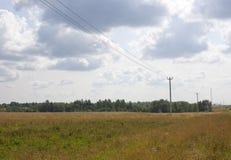 Зеленый луг под голубым небом с облаками белизны Стоковое фото RF
