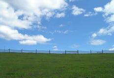 Зеленый лужок и голубое небо Стоковые Изображения