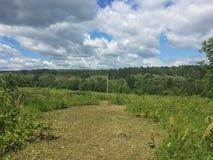 Зеленый лужок и голубое небо Стоковое Изображение