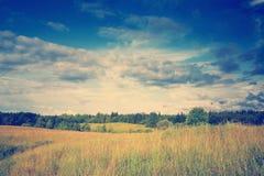 Зеленый лужок под драматическим ландшафтом неба Стоковое Изображение RF