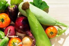 Зеленый укроп, фиолетовый лук перцев, томатов, цукини, голубых и желтых на деревянной предпосылке в солнечном свете Стоковое фото RF