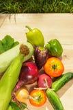 Зеленый укроп, фиолетовый лук перцев, томатов, цукини, голубых и желтых на деревянной предпосылке в солнечном свете Стоковое Изображение RF