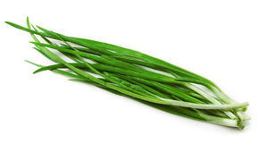 Зеленый лук Стоковые Фото