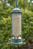 Зеленый фидер птицы цилиндра смертной казни через повешение заполнил с семенем, зелеными folia Стоковая Фотография