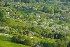 зеленый холм Стоковая Фотография
