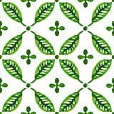 Зеленый цвет акварели выходит безшовная картина вектора Стоковая Фотография RF