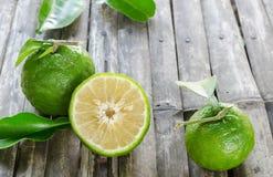 Зеленый цвет апельсинов Стоковое Изображение