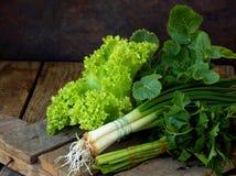 Зеленый цвет весны для салата на деревянной предпосылке Лук, салат, петрушка, редиска выходит Стоковые Фото