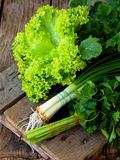 Зеленый цвет весны для салата на деревянной предпосылке Лук, салат, петрушка, редиска выходит Стоковая Фотография RF