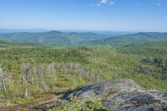 Зеленый цвет времени весны в Adirondacks стоковое фото rf