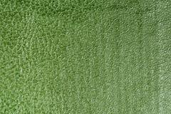 Зеленый цвет выбил декоративную предпосылку текстуры leatherette, конец вверх Стоковые Фото