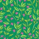 Зеленый цвет выходит акварели безшовная картина Стоковое Изображение RF