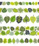 Зеленый цвет выходит безшовный комплект картины границы стилизованно Стоковая Фотография RF
