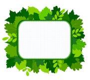 Зеленый цвет выходит рамка Стоковое Изображение RF