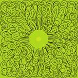 Зеленый цвет выходит цветок Стоковые Фото