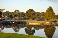Зеленый цвет гольфа на острове в Орландо Флориде Стоковое Изображение