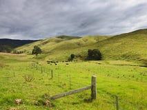 Зеленый цвет загородки долины DNP Стоковое Изображение