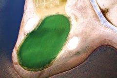 Зеленый цвет зимы Стоковые Фотографии RF