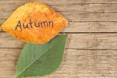 Зеленый цвет и апельсин выходят с ОСЕНЬЮ надписи на деревянную предпосылку Стоковое Фото