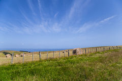 Зеленый цвет и горный склон с стогами сена и голубым небом Стоковые Фотографии RF