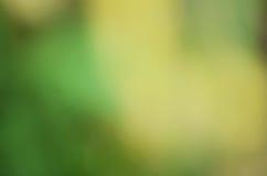 Зеленый цвет и желтый цвет предпосылки Стоковые Фотографии RF