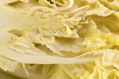 зеленый цвет капусты свежий Стоковые Фотографии RF