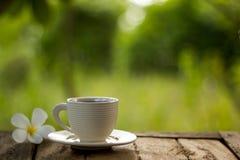 зеленый цвет кофейной чашки предпосылки Стоковое Изображение