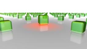 Зеленый цвет кладет crwod в коробку с выбранное одним Стоковое Изображение RF