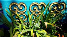 Зеленый цвет на teal Стоковая Фотография