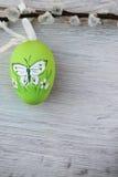 зеленый цвет пасхального яйца Стоковые Изображения