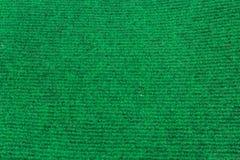 зеленый цвет полета птиц предпосылки осени выходит лучам поворот солнца Стоковое фото RF