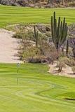 Зеленый цвет поля для гольфа пустыни Стоковые Фото
