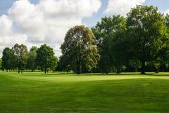 Зеленый цвет поля для гольфа Стоковые Фото