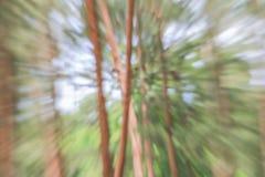 Зеленый цвет предпосылки запачканной деревом, влияния сигнала скорости Стоковая Фотография