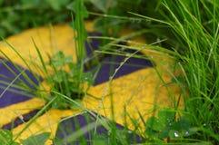 Зеленый цвет против серии ядерной энергии Стоковые Фотографии RF