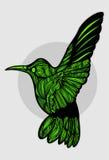 Зеленый цвет птицы Стоковое Изображение RF
