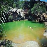 Зеленый цвет рая Стоковое Изображение RF