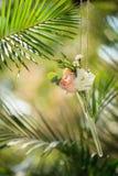 Зеленый цвет розового украшения свадьбы вися Стоковые Фото