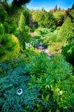 зеленый цвет сада Стоковые Изображения