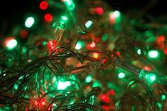 Зеленый цвет светов и цветов Cristmas Стоковое Изображение