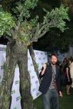 Зеленый цвет Тома Стоковые Фотографии RF